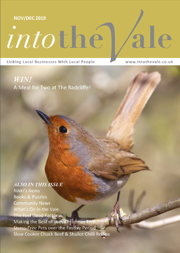 Into the Vale Nov/Dec 2019 Issue